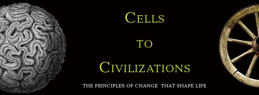 cells to civilisations