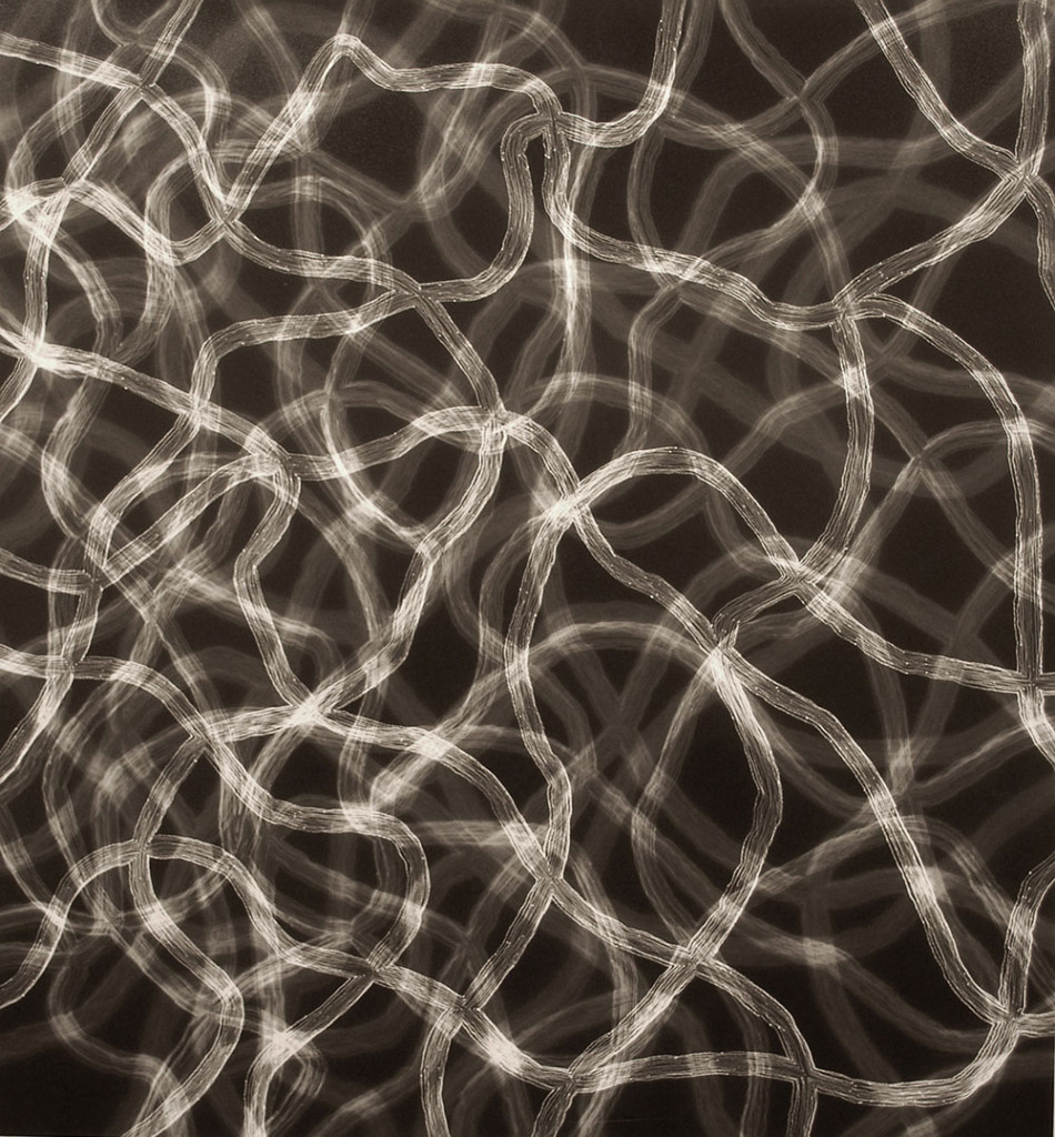 Untitled photogram (5L/11X-2), 2010