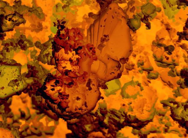 "Cris Orfescu - ""NanoWing"", digital print, archival inks on canvas"
