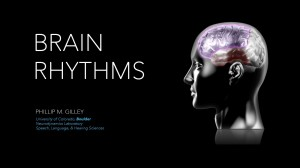 Brain Rhythms