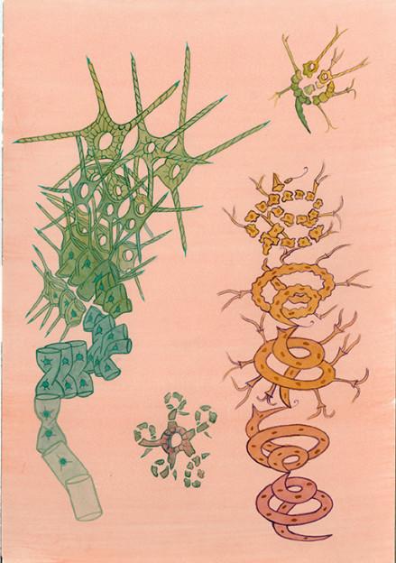 Isomorphogenesis No.1