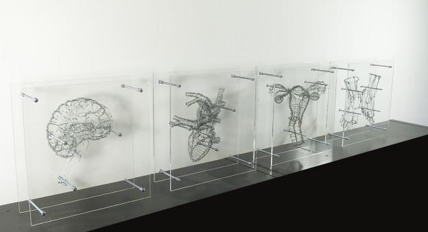 Anatomical No-Body (© Federico Carbajal)