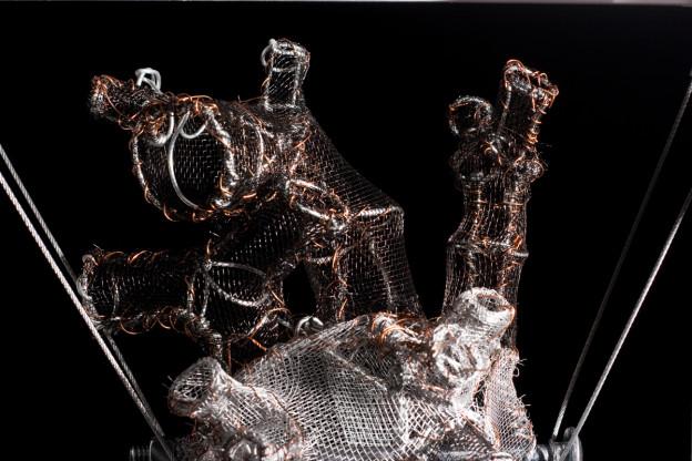 Anatomical No-Body Heart (© Federico Carbajal)
