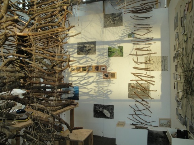 Silvia Krupinska: Studio Hide