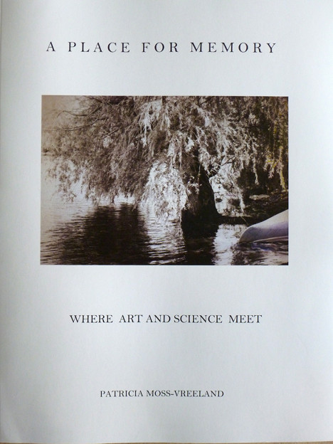 A Place for Memory: Where Art and Science Meet (book cover)