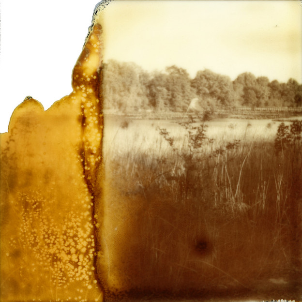 "Laura Krasnow: Memories Lost/Found #1. 2014. Polaroid, Digital Photography. 22"" x 22"""