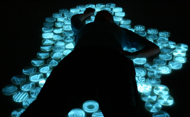 """Body,"" photograph by the light of bioluminescent bacteria, Hunter Cole."