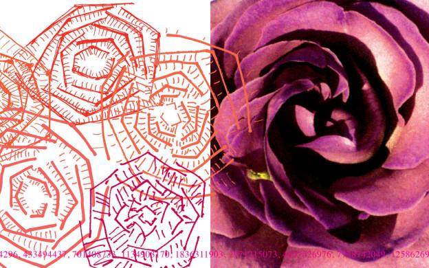 2007_Element_image01_96dpi