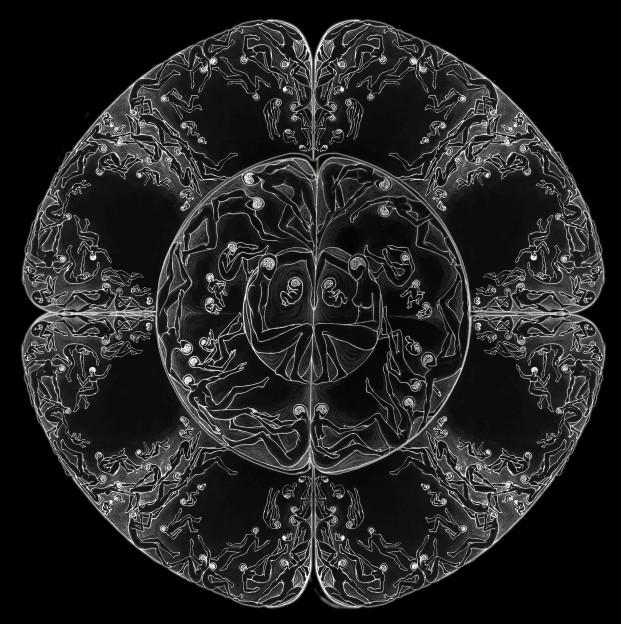 Julius Colwyn: Cellular Culture