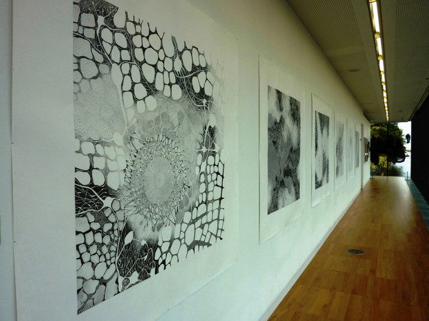 Michael Geddis: Installation, six graphite pencil on paper drawings, 150 x 150cm each, Luan Gallery Athlone, 2013