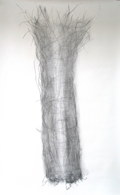 Julia Hutton: Threaded Form, charcoal on paper, 140 x 150 cm