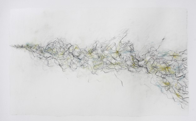Fiona Robinson: Syrinx. Graphite charcoal and mixed media 40 x 60 cms